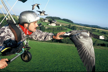 voler-avec-oiseaux
