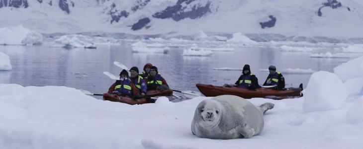 voyage-croisiere-antarctique (3)